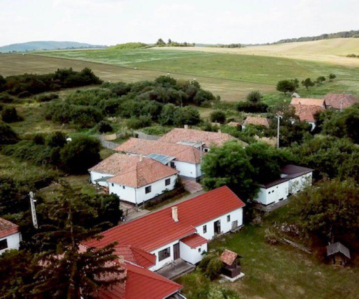 7. Artist Farm