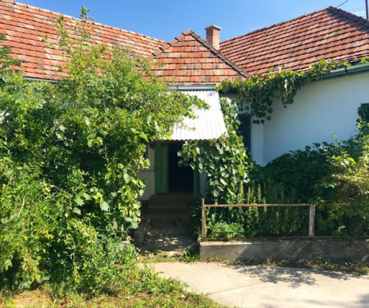 1. Kovacs Huis