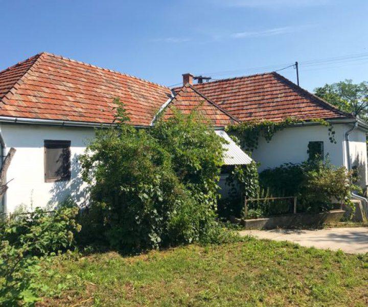 4. Szilva Huis